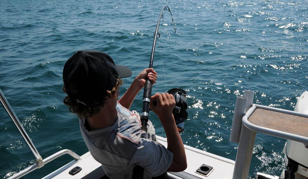 Fishing vitaes